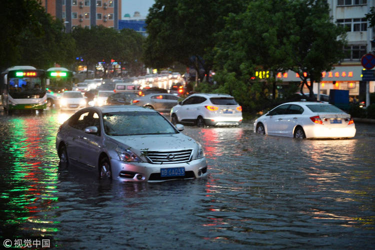 Image from http://shanghaiist.com/2018/06/15/severe-storm-causes-sea-creatures-to-rain-down-on-qingdao-motorists/