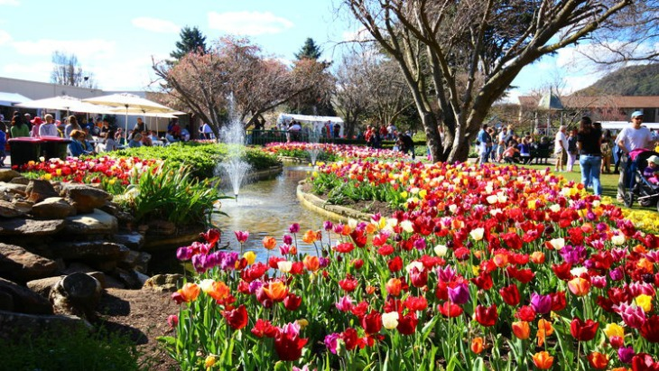 Tulip Time is a must-see Springtime event