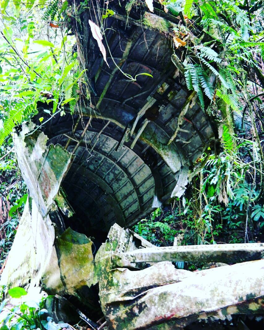 People Are Hiking Up This Gunung In Negeri Sembilan To See A WWII