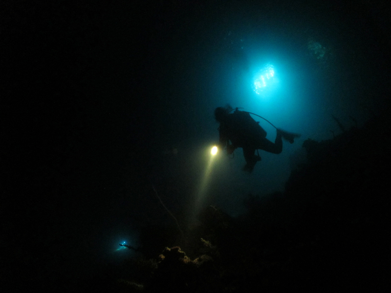 Image from Dive Systems Malta