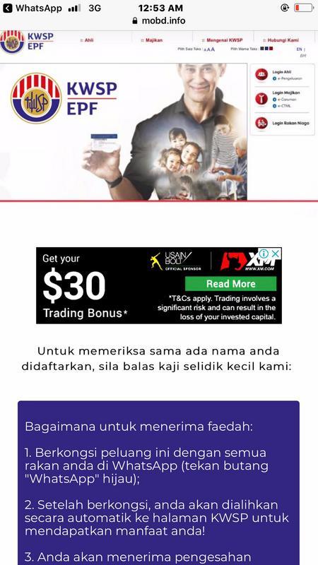 A screenshot of the fake website.