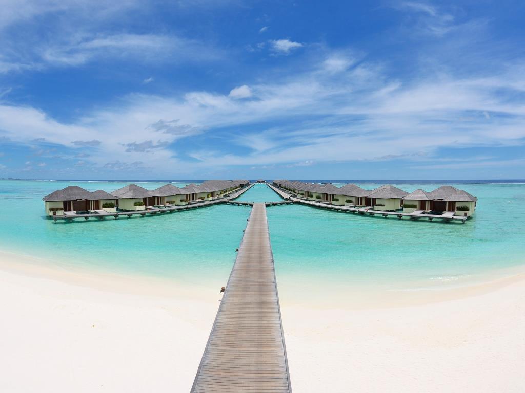 Image from Paradise Island Resort & Spa