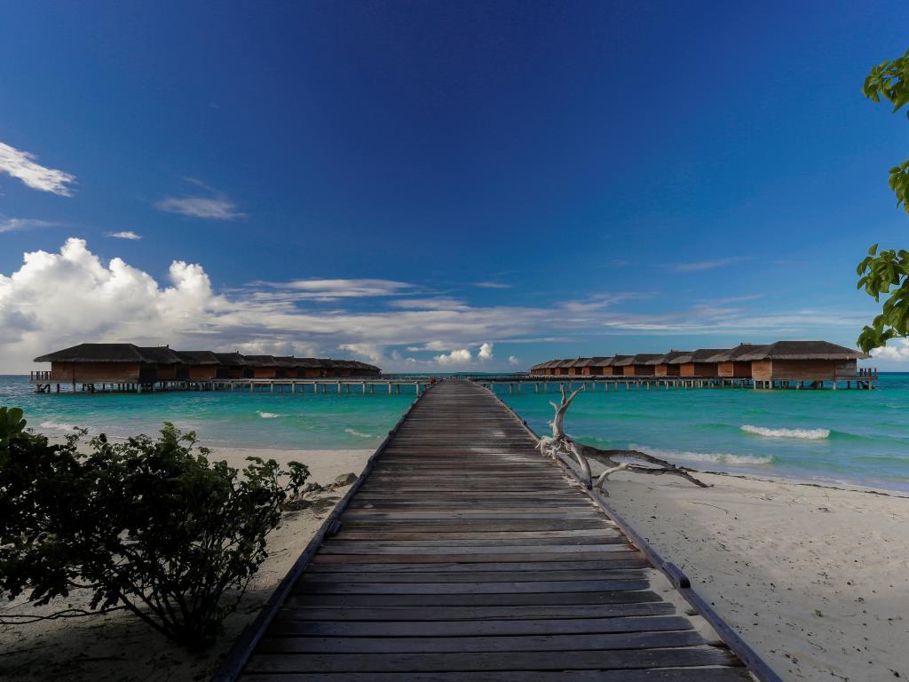 Image from Medhufushi Island Resort