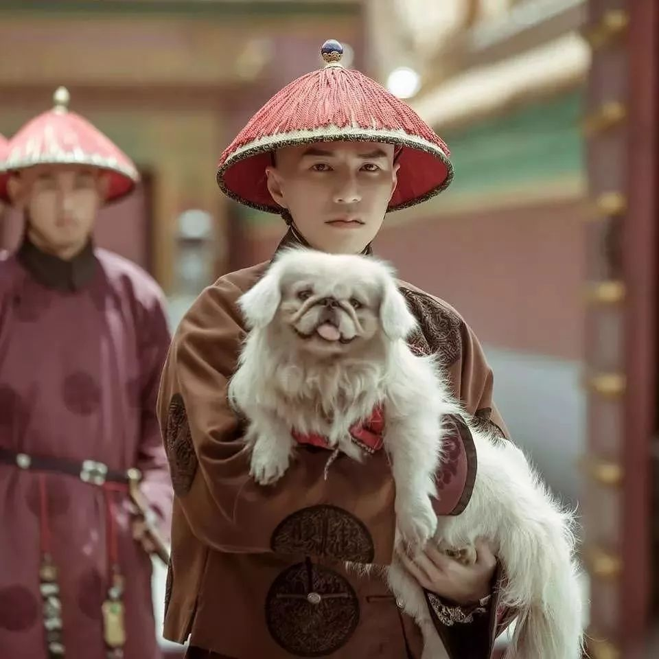 Image from Huanyu Film / iQiyi