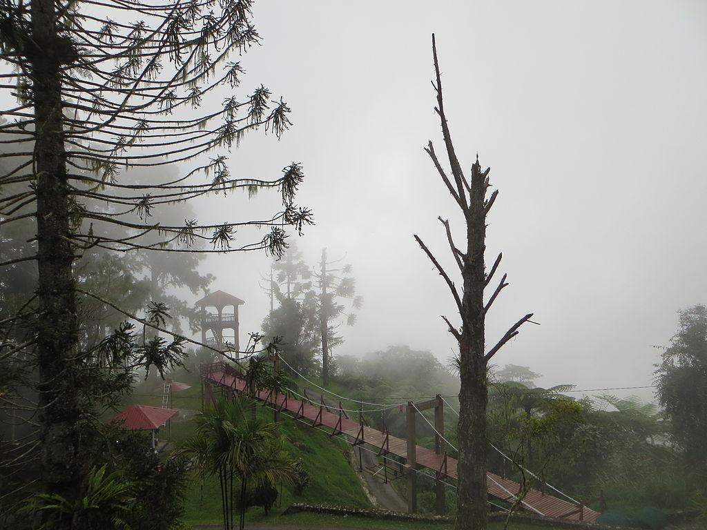Maxwell Hill Bukit Larut