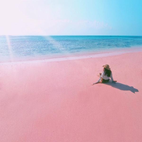 tangsi pink beach in lombok indonesia