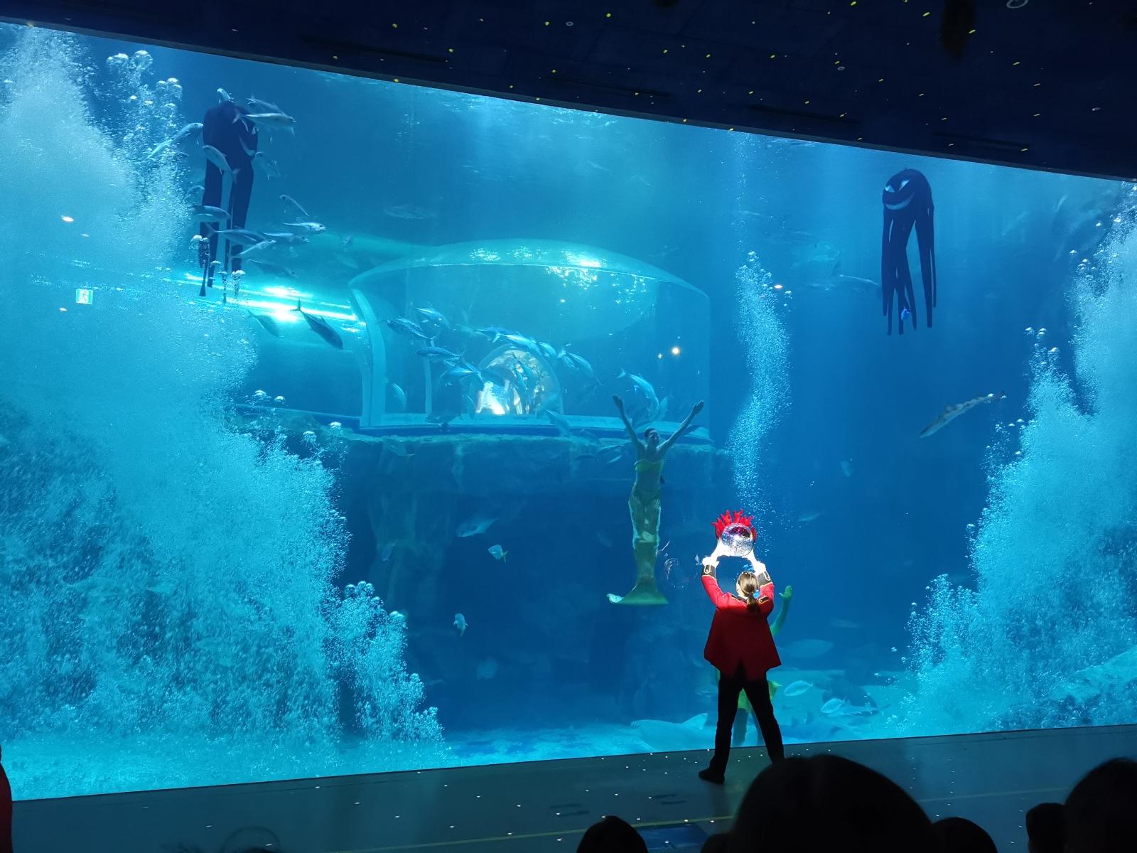 The Legend of the Blue Sea at Hanhwa Aqua Planet Yeosu