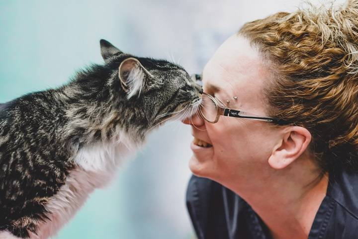 Baloo nuzzles with a vet technician in a photo by Montreal SPCA.