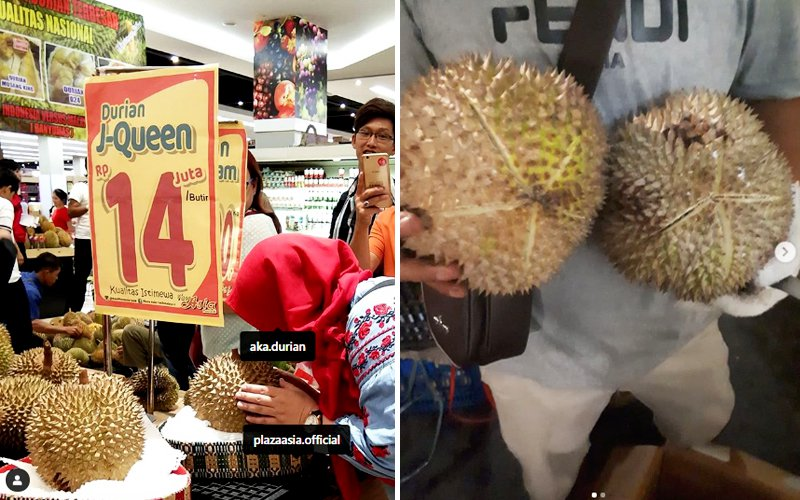 """The RM4,100 """"J-Queen"""" durian."""