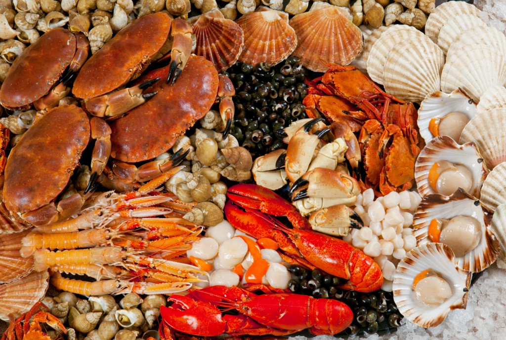 Image from aboutseafood