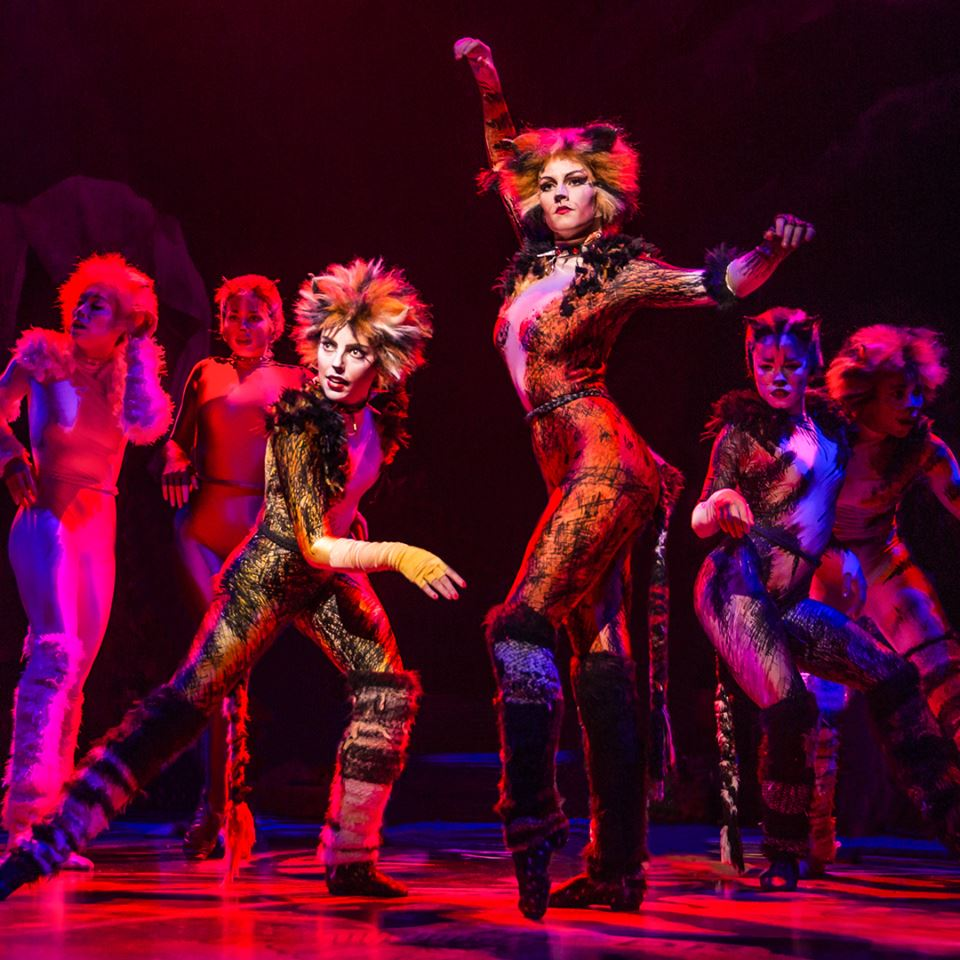 cats musical broadway malaysia yes tickets live coming story buzz shows via