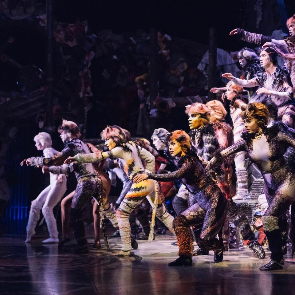 Image from Cats the Musical Facebook