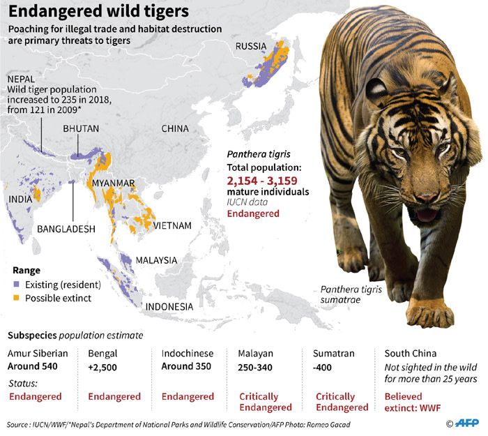 A fact file with data compiled till 2018 on endangered wild tiger population and range in the wild lists Malayan tigers as critically endangered.