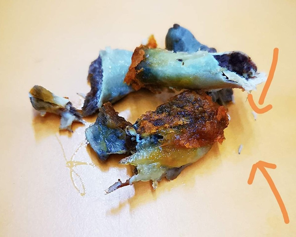 Photographe of the maggot-infested ayam goreng shared by the woman.