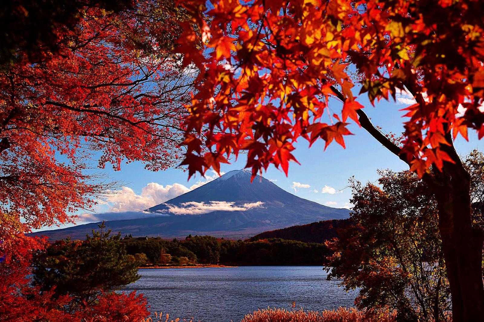 Image from Japan Web Magazine