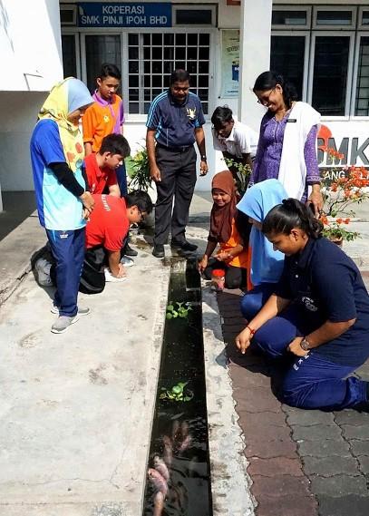 Image from Nanyang Siang Pau