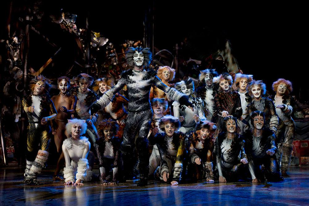 Image from Cats the Musical/Facebook