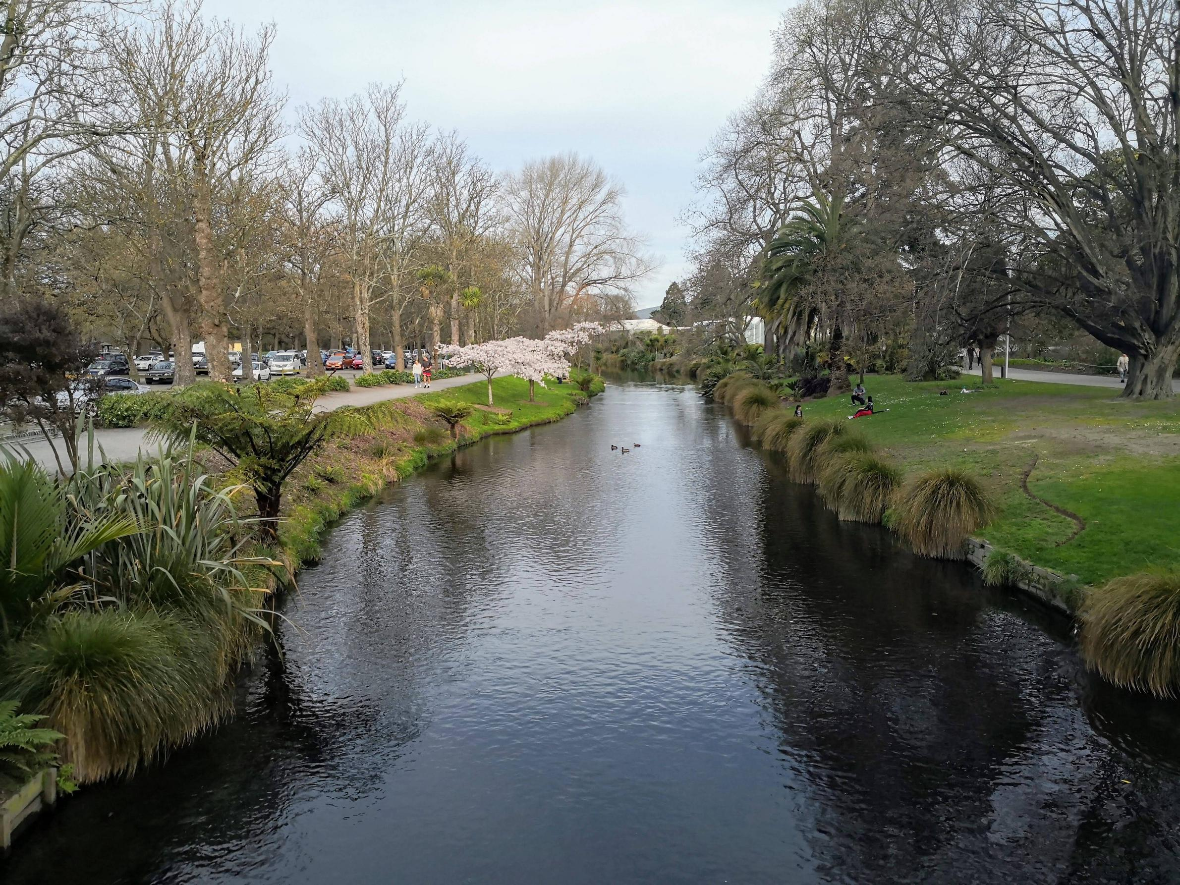 The Avon River with the Christchurch Botanic Gardens on the right and Hagley Park on the left.