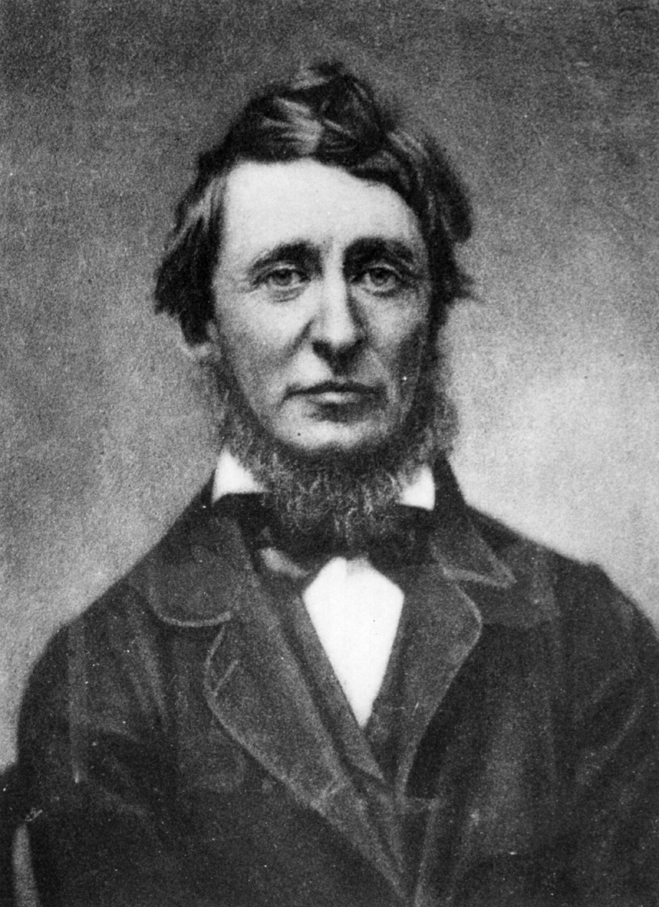 a biography of henry david thoreau an american author poet and philosopher Henry david thoreau (july 12, 1817 – may 6, 1862), born david henry thoreau was an american author, naturalist, pacifist, philosopher, and transcendentalistlike his peers ralph waldo emerson, bronson alcott, margaret fuller, and nathaniel hawthorne, thoreau believed nature to be an expression of god and a symbolic reflection of the.