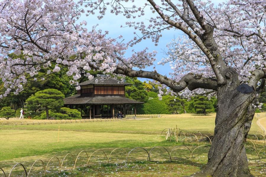 Image from Explore Okayama