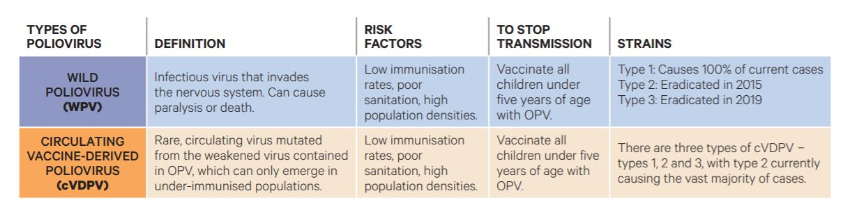 The difference between wild strains and vaccine-derived poliovirus.