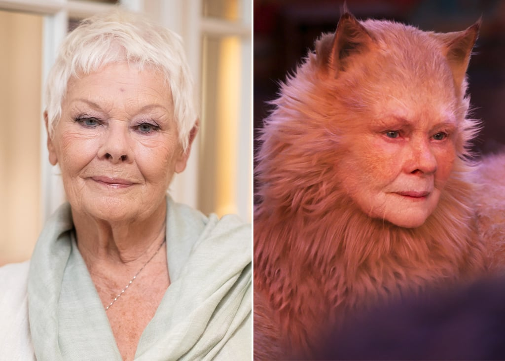 Judi Dench plays Old Deuteronomy, a wise and elderly cat who is the leader of the Jellicle clan.