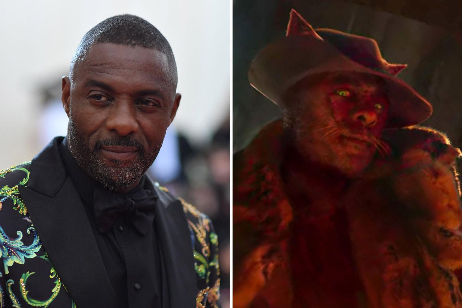 Master criminal Macavity, played by Idris Elba, is the villain of the story who possesses mystical hypnosis powers.