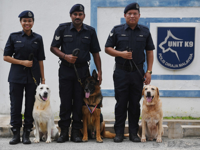 Lao Wu and his handler Sergeant S Sanmugam standing together (middle).
