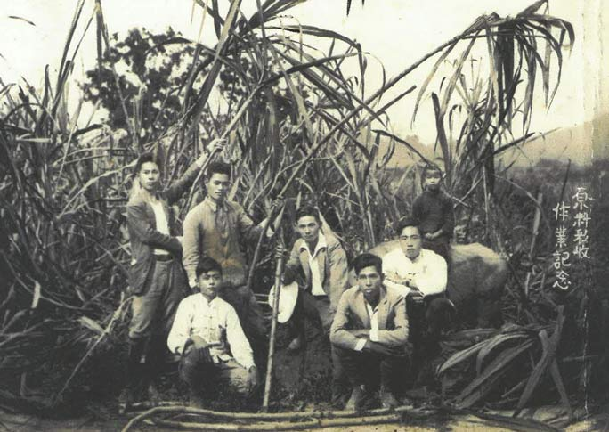 Watanabe (centre) at a sugar cane farm.