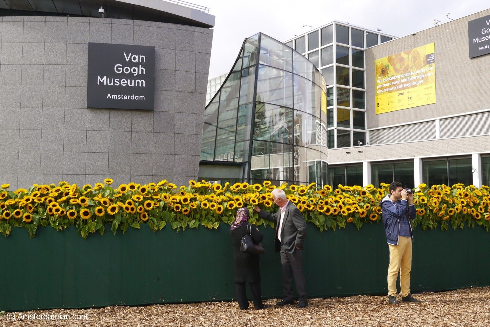 Tourists at the sunflower labyrinth outside th Van Gogh Museum, Amsterdam.