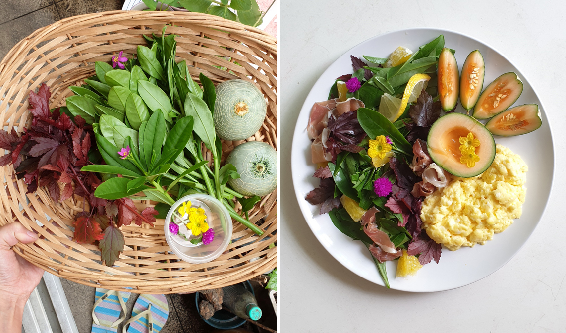 Her harvest from her garden to make a salad. And she used edible flowers as garnishing.