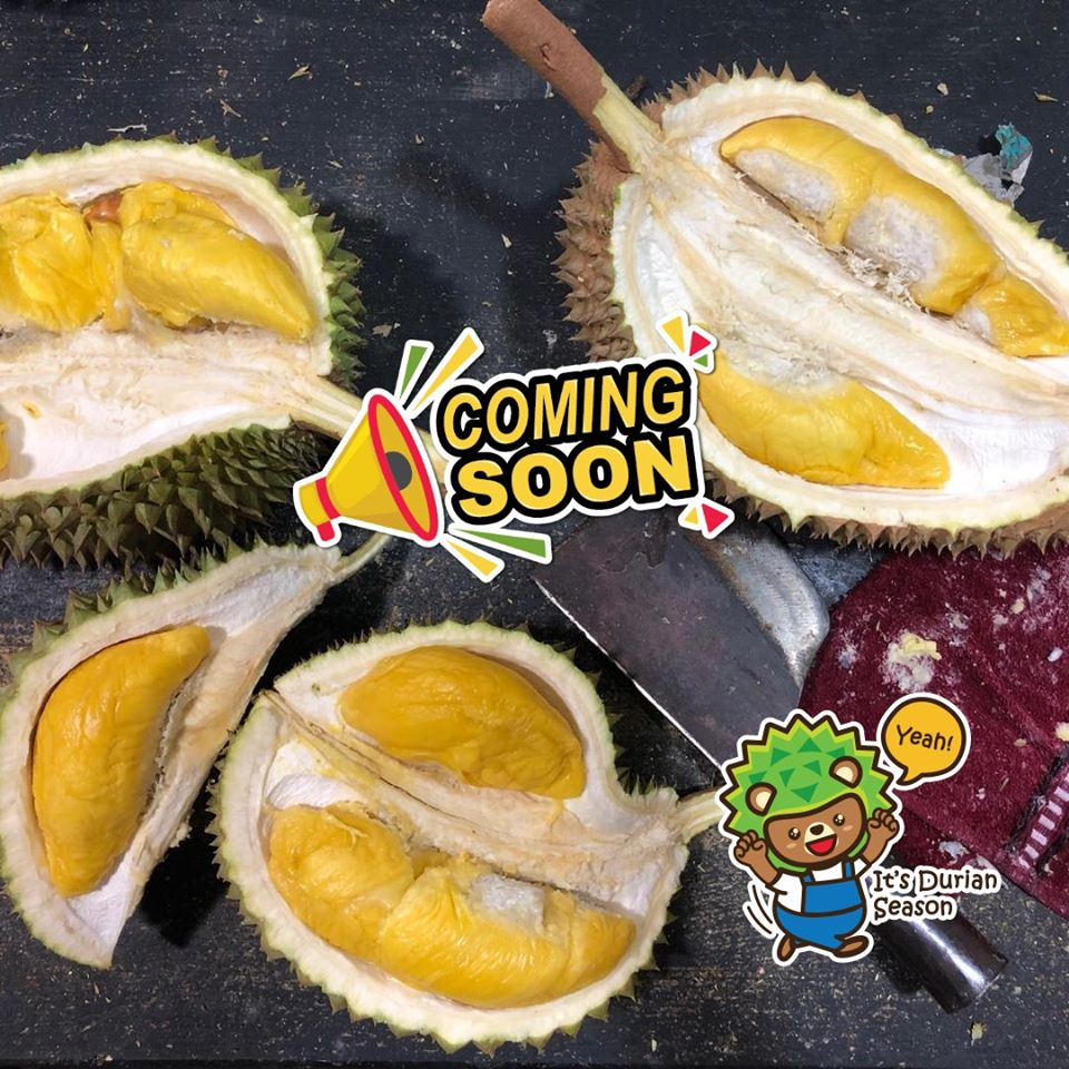 Image from Durian Bear/Facebook
