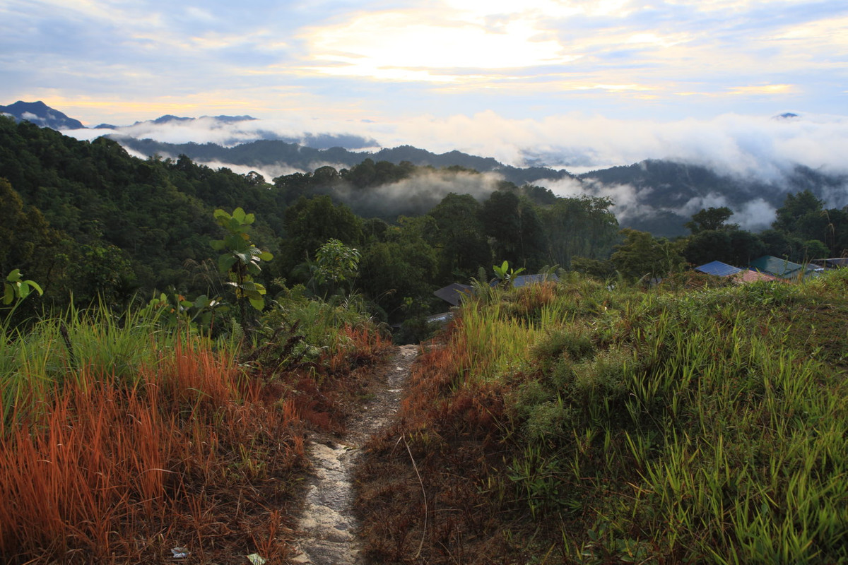 Image from Sarawak Tourism Board