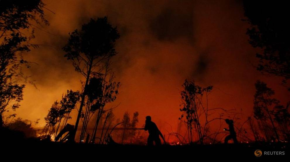 Firefighters trying to extinguish forest fires in Palangka Raya, Central Kalimantan province on 14 September 2019.