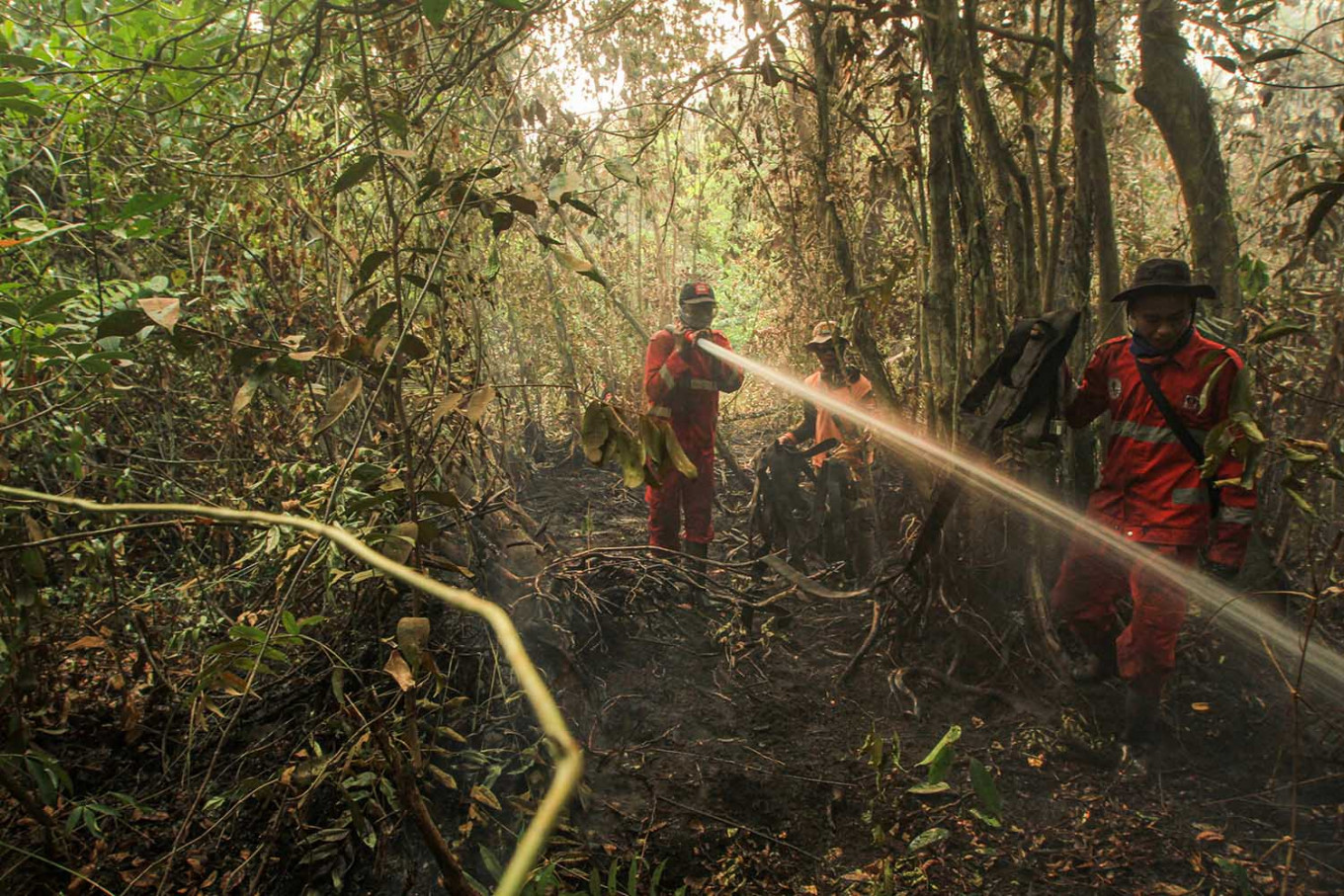 Firefighters fighting a peatland forest fire in South Sumatra on 23 September 2019.
