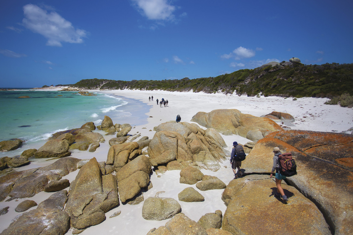 Image from Tasmanian Walking Company / Great Walks of Australia