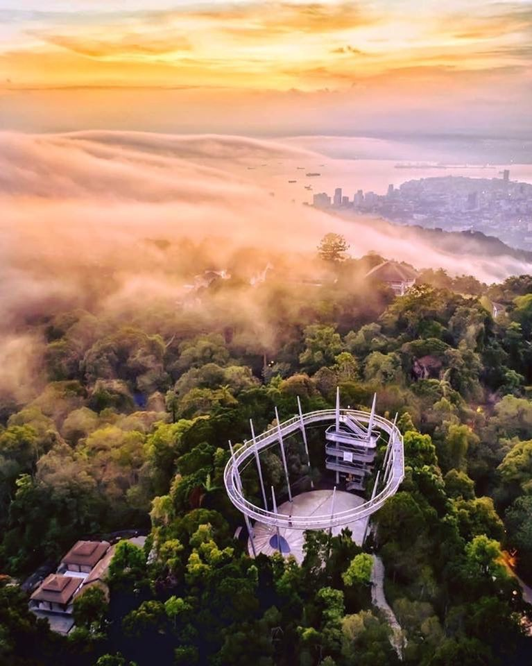 Image from The Habitat Penang Hill/Facebook